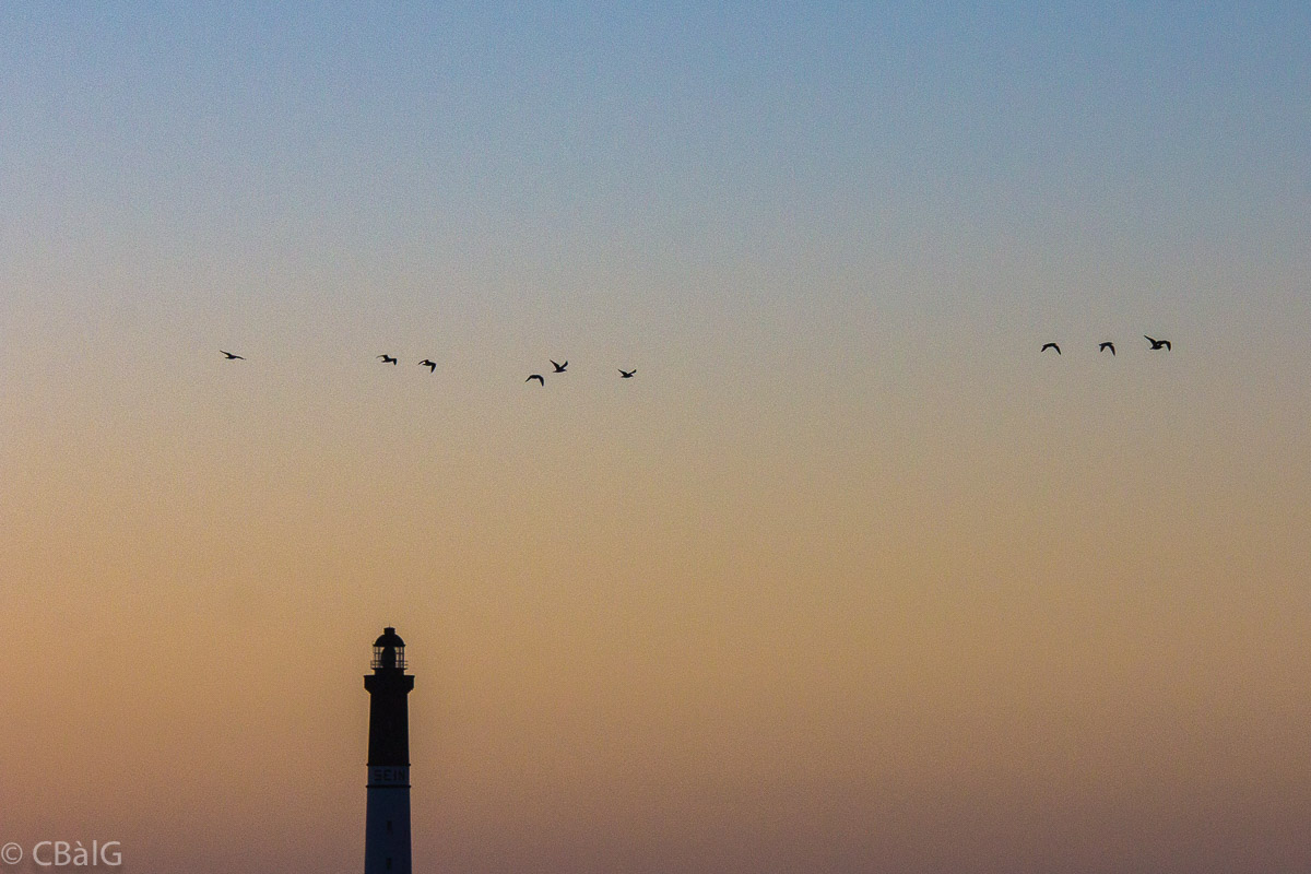 Le grand phare photographies cb lg for Fenetre 50x75